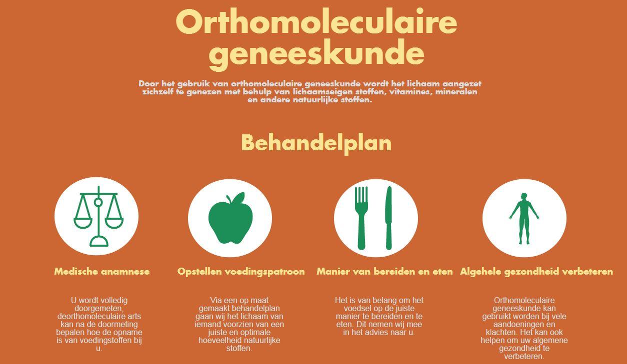 orthomoleculaire geneeskunde infographic